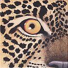Leopard's Eye by Rob Johnston