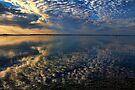 Reflection Perfection by Carolyn  Fletcher