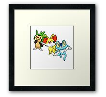 pokemon starter 6 Framed Print