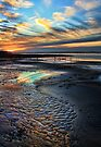 The Colors Of A Sunset Shoreline by Carolyn  Fletcher