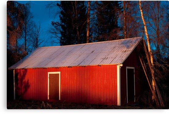 Valborg #5 by Bjarte Edvardsen