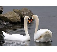 In Love Eyes only for each uther Photographic Print