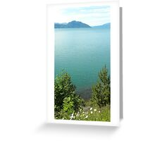 Blue day at the Fjords. Greeting Card