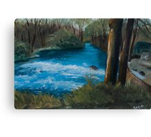 Forest River - England  Canvas Print