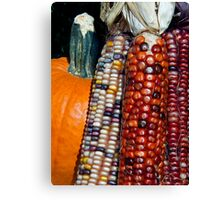 Indian Corn and Pumpkin Canvas Print