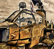 Texas Cobra by Scott Lebredo