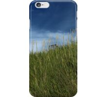 Slope of dune grass iPhone Case/Skin