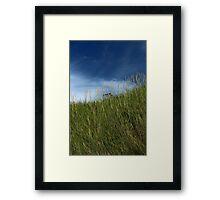 Slope of dune grass Framed Print