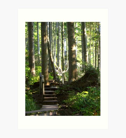 Hiking among Giants Art Print