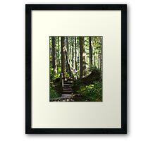Hiking among Giants Framed Print