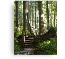 Hiking among Giants Canvas Print