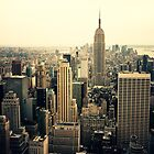New York City Views - By Vivienne Gucwa by Vivienne Gucwa