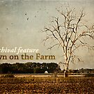 Down on the Farm- Midweek Archive Feature Banner by vividpeach