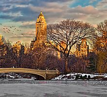Bow Bridge In Winter by Chris Lord