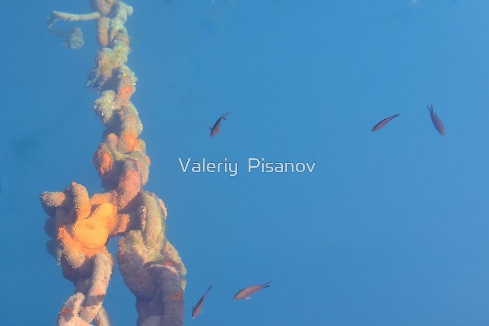 Pier by Valeriy  Pisanov