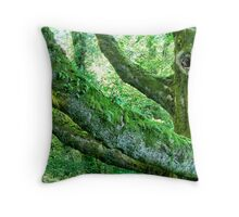 A Tree of Ages Past Throw Pillow