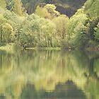 Fall Reflection by Payne24
