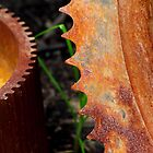 Rusty Gear Teeth by Kenneth Keifer