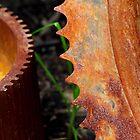 Rusty Gear Teeth by Kenneth Keifer