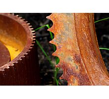 Rusty Gear Teeth Photographic Print