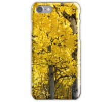 Fall in Alberta iPhone Case/Skin