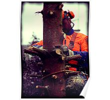 Tree felling workers Poster