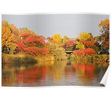 Sunset Reflection Fall Colors  Poster