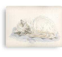 Lazy Fleur Canvas Print
