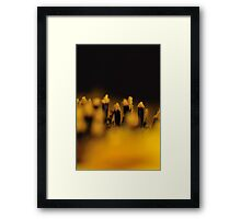 Sunflower 1:1 Framed Print