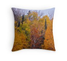 Fall colours, Ontario Throw Pillow