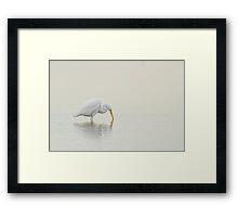 An Egret Finds Himself Framed Print