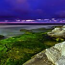 Moss at Maroubra by Mark  Lucey