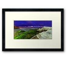 Moss at Maroubra Framed Print