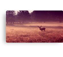 Deer at Dawn Canvas Print