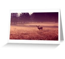 Deer at Dawn Greeting Card