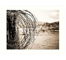 Barbed Wire Art Print