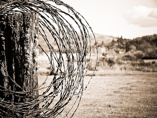 Barbed Wire by LadyEloise