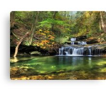 Quinn Run Cascades Canvas Print