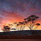 Sunset Storm - Randalls Gold Project - WA by Chris Paddick