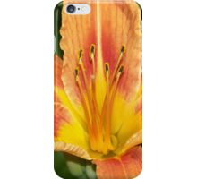 Day Lily (iPhone Case) iPhone Case/Skin