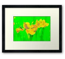 Funky flowers Framed Print