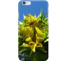 iPhone Case ~ Sunflower Bud iPhone Case/Skin
