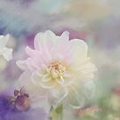 White Dahlia flower in a pastel environment by walstraasart