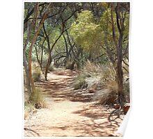 pathways, canyon walk 2 Poster