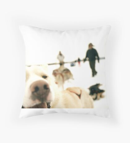 Perro Lobo Throw Pillow