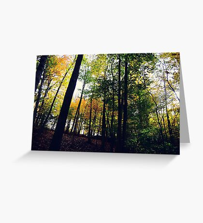 Lines of Autumn Greeting Card
