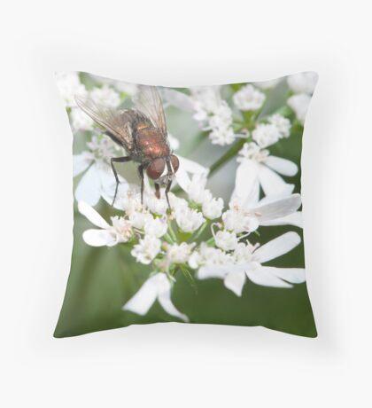 Common housefly Throw Pillow