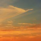 Cloud Bird by OzShell