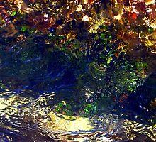 Water Gems by debsphotos