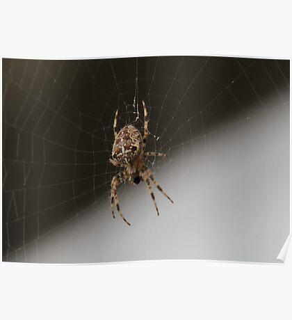 Boris - The Spider Poster